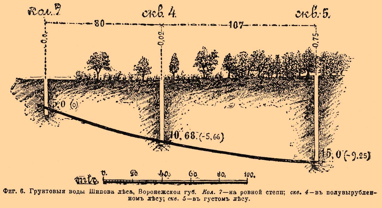 Грунтовые воды Шипова леса,