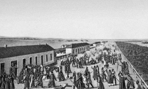 Новгородской губ в 1831 рисунок 19 в