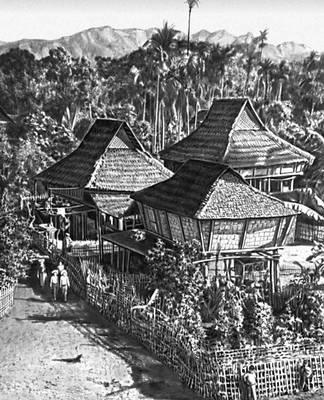 Жилые дома из бамбука в провинции