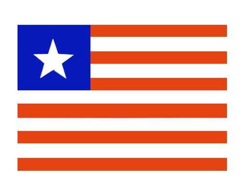 флаг рик