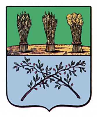 герб ковылкино