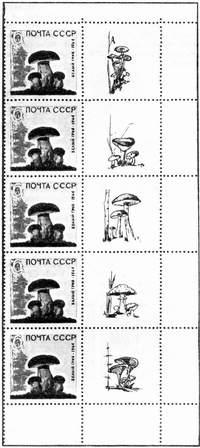 Крайняя вертикальная полоска листа марок с купонами (СССР)
