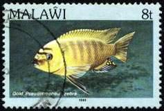 Почтовая марка Республики Малави