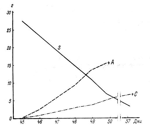 Влияние аллелосполии при потреблении влаги житняком (Agropyron fragile - А) и климакоптерой (Climacoptera brachiata - С) на их рост и транспирацию. По оси абсцисс - дни с начала вегетации; по оси ординат - запас влаги в почве сосудов (г на 100 г абс. сух. почвы); s - кривая снижения запаса влаги в почве. Крестиками отмечено время завядания и гибели растений