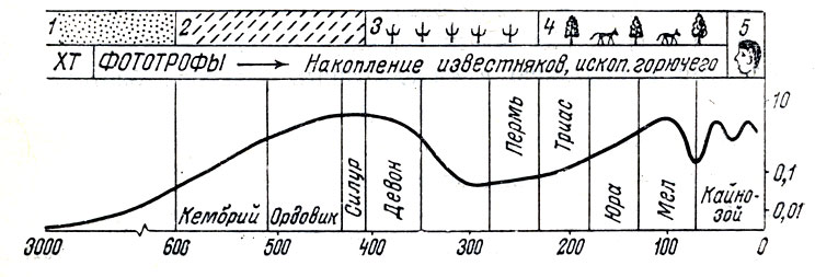 Эволюция биосферы: 1 - только одноклеточные; 2 - многоклеточные организмы; 3 - наземная растительность и появление позвоночных животных; 4 - высшие растения и животные; 5 - взрыв популяции человека; XT - анаэробные хемотрофы. <!-- *** native *** -->      <script async src=