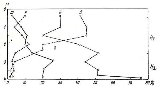 Смена, в процессе биоценогенеза, широколиственных лесов на Дальнем Востоке сосновыми и кедровыми в среднем (Нsub3/sub) и позднем (Нsub4/sub) голоцене. Обозначения: Ш - широколиственные породы; С - сосны; Е - ели; Б - березы (по пыльцевой диаграмме: Нейштадт, 1957)