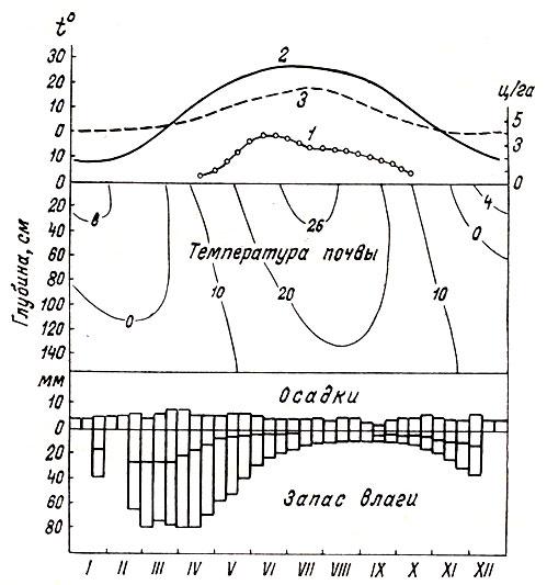 Годовая динамика запаса кормов (1) на полынно-боялычевом пастбище и экологических факторов: средиедекадной температуры воздуха (2), дефицита влажности (3); в середине - кривые температуры почвы; внизу - диаграммы количества осадков, влажности завядания и запаса влаги в почве (Федосеев, 1964)