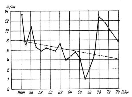Рис. 33. Колебания ежегодной урожайности на одном из участков разнотравно-злакового пастбища и тренд (пунктиром), показывающий тенденцию падения его продуктивности (Гамаюнова, 1981)