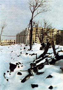 Зимний пейзаж на строительной площадке (г. <!-- *** native *** -->      <script async src=