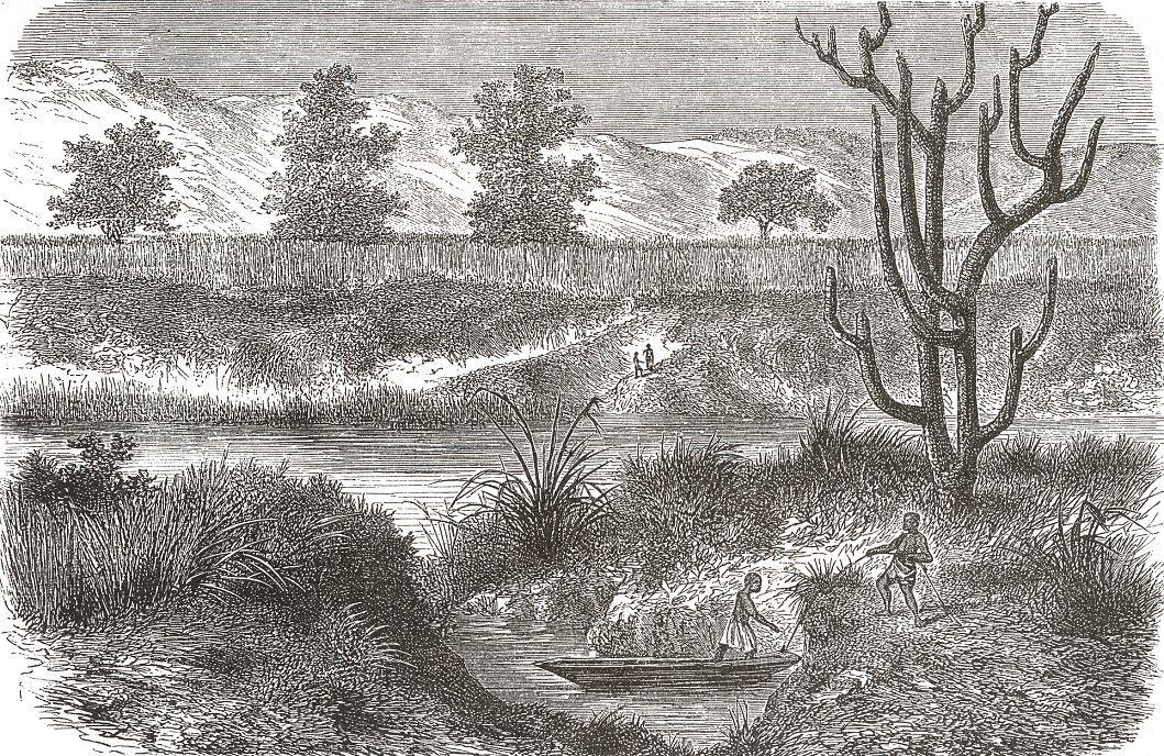 Один из притоков Нила