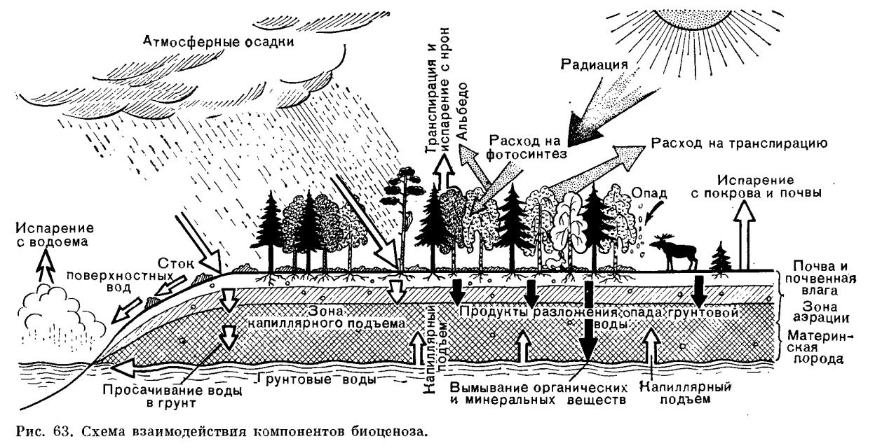 В. Н. Масляев охрана окружающей среды учебное пособие.