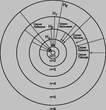 Рис. 7. АТОМ ВОДОРОДА.  Изображены шесть круговых орбит, отвечающих стабильным энергетическим уровням отдельного...
