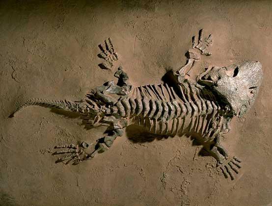 что могут найти археологи