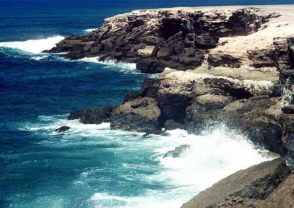 Побережье тихого океана в районе