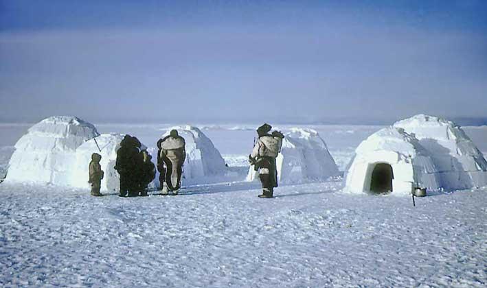Канадские эскимосы