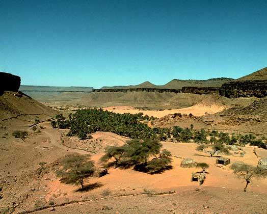 ОАЗИС в западной части Мавритании.