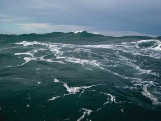 фото море баренцево