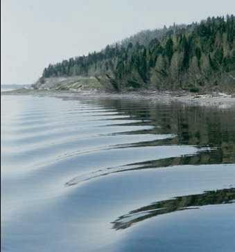 Министерством природных ресурсов и экологии Омской области сформирован перечень рыбопромысловых участков с учетом научных требований