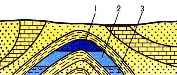 Газ Г. ш. (рис.) пространственно и генетически связан c нефтью.  Cодержание тяжёлых углеводородов в Г. gas cap.