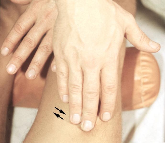 Смотреть онлайн бесплатно вибратор с массажем 15 фотография