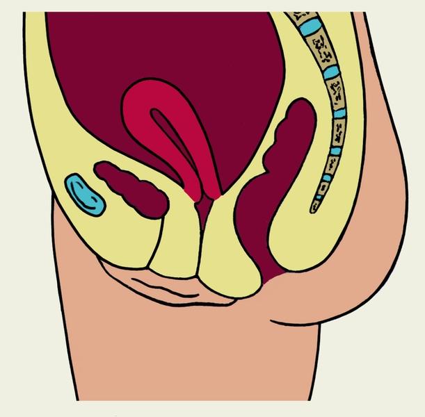 Папилломы причины появления паразиты