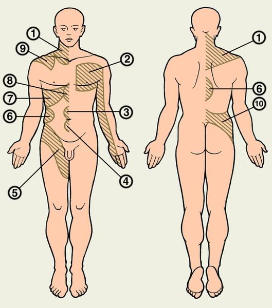 Боли в пояснице у мужчин причины и лечение
