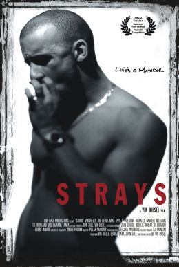 http://dic.academic.ru/pictures/enwiki/83/Strays_movie_poster.jpeg