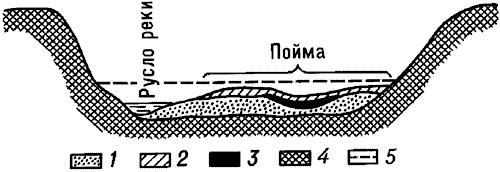 Схема строения аллювия равнинной реки.