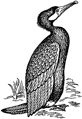 Черешня — Википедия