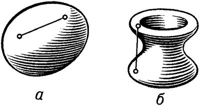 Выпуклое (а) и невыпуклое (б) тела.