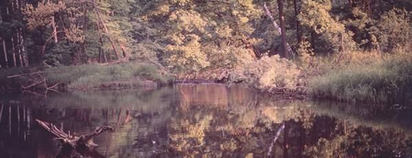 Мещёрский национальный парк.