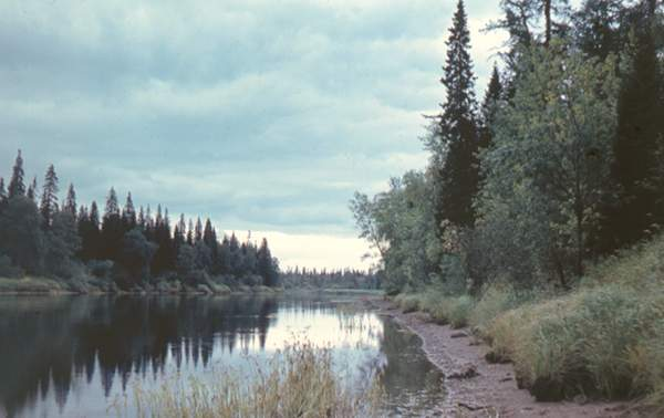 Река Северная Двина.