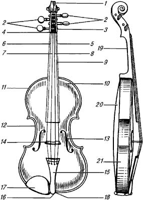 Скрипка. Схема.