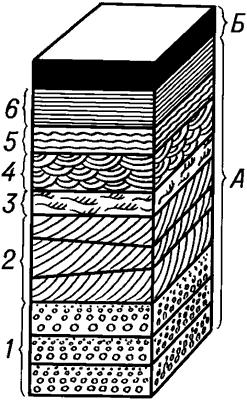 Типы слоистости горных пород.