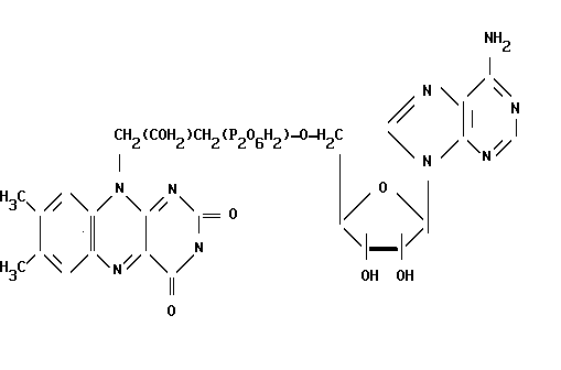 flavin adenine dinucleotide, FAD, флавин-адениндинуклеотид, ФАД