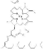 Рис.2.Структурная формула бактериохлорофилла a. По сравнению с хлорофиллом