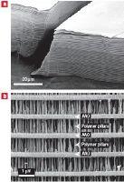 СЭМ-изображения 3D-структур на основе тонких пористых пленок анодированного оксида алюминия, сшитых