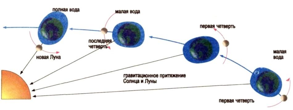 физика отливов и приливов