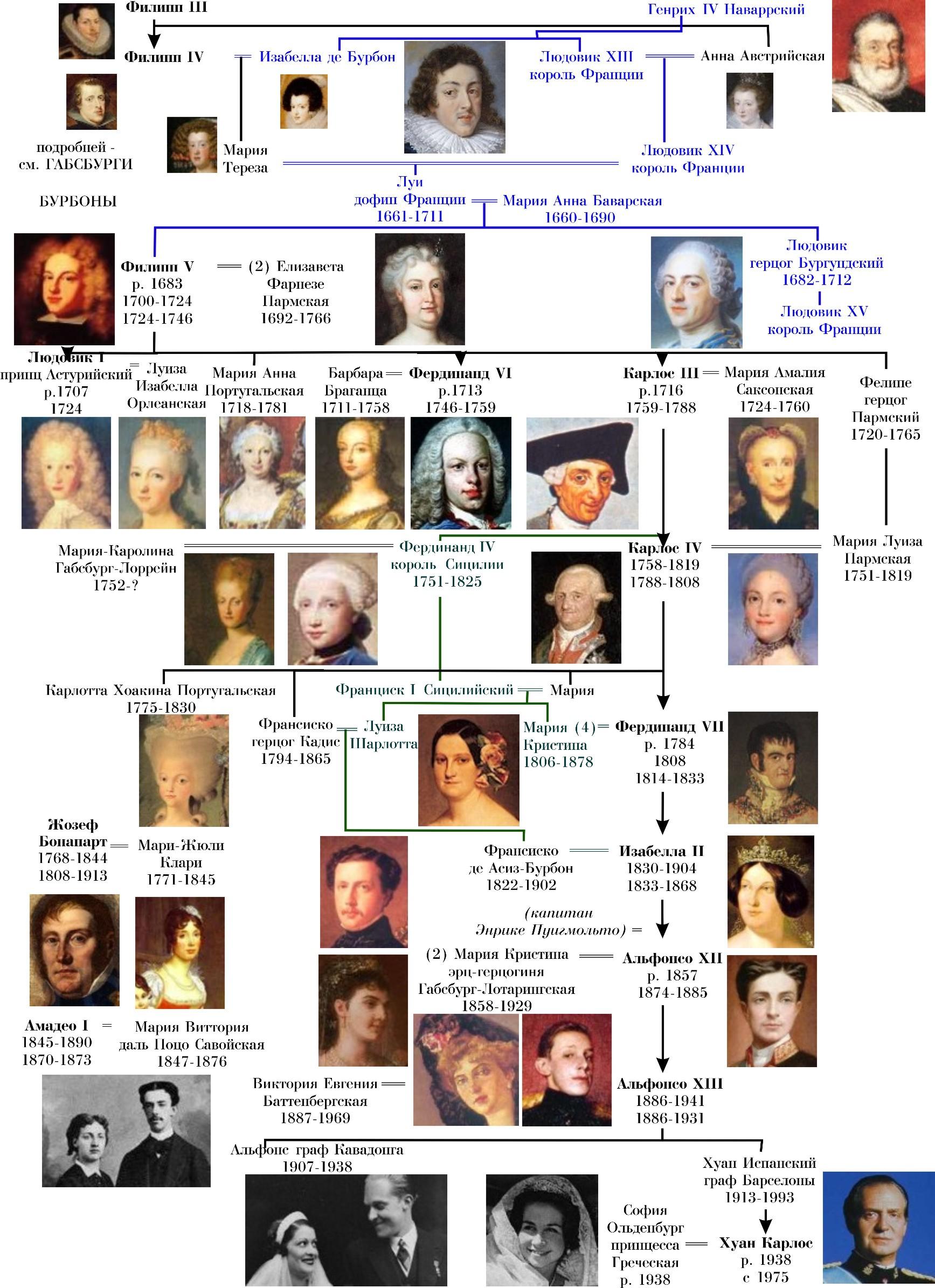 Династия бурбонов генеалогическое древо схема