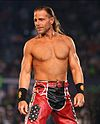 Shawn Michaels at WrestleMania XXIV.jpg