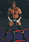 Triple H Relaxed Melbourne 10.11.2007.jpg