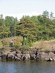 Priroda Valaamskogo arhipelaga.jpg
