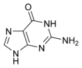 Guanine chemical structure.png