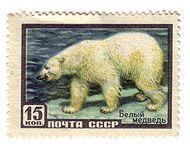 190px-Belyj_medved Медведь белый - это... Что такое Медведь белый?