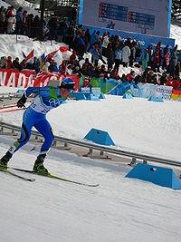 2014 Winter Olympics  Wikipedia
