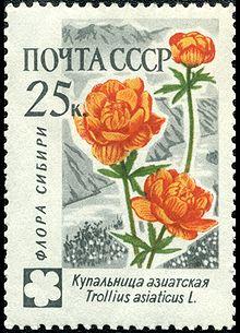 Изображение цветка на почтовой марке СССР