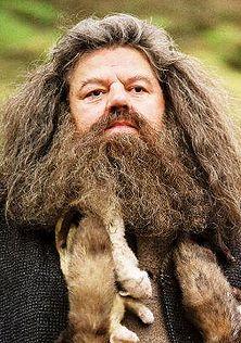 АКЦИИ!  222px-Hagrid