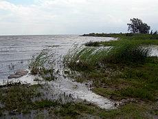 LakePeipus02.JPG