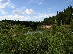 Belarus-Junction of Viliya and Usha Rivers.jpg