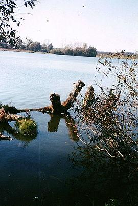 река в с.Новосильское